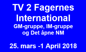 TV 2 Fagernes International