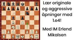 Sjakktrening med IM Erlend Mikalsen